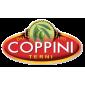Oleificio Coppini